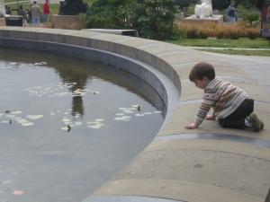 sf - ewan fountain