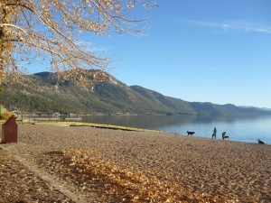 tahoe fall